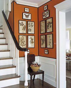 koper oranje