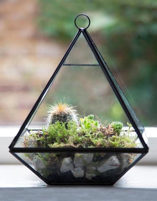 browsehouse-terrarium-piramide-03-510x652