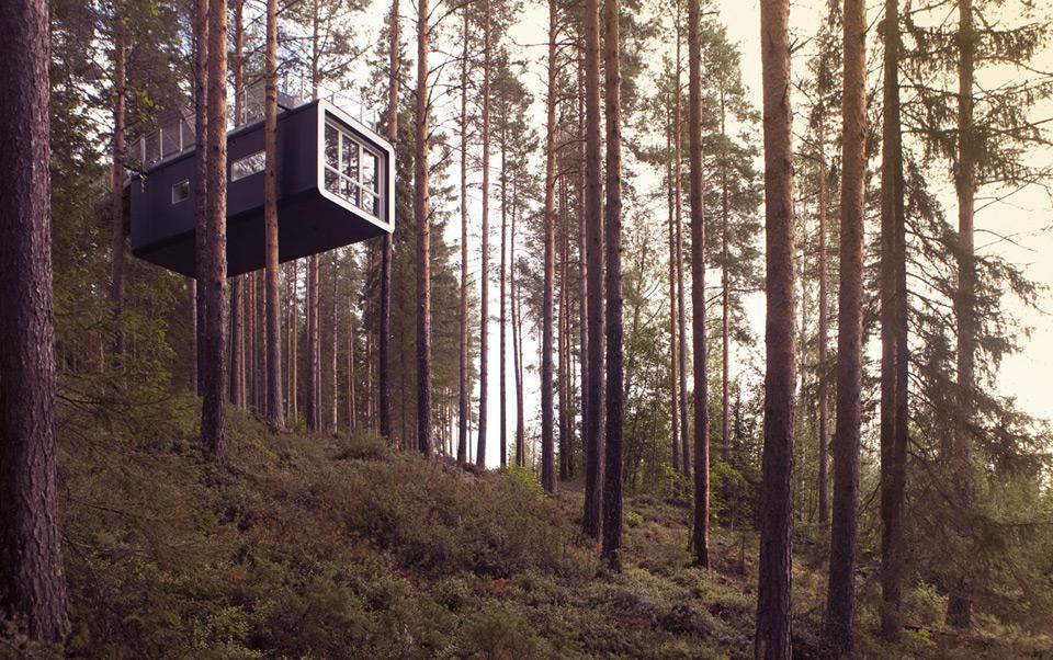 Treehotel Cabin